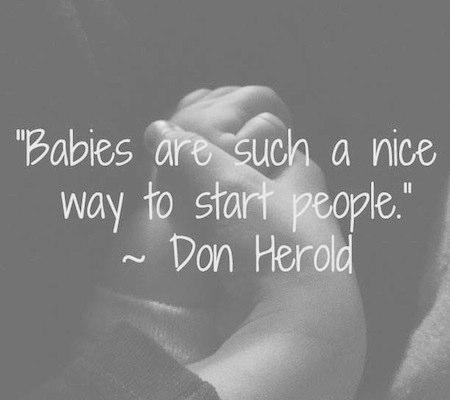 Ahh, babies!