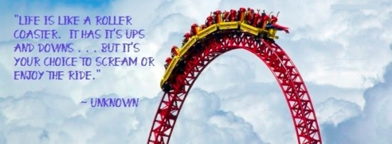 life's rollcoaster is for enjoyment and not pain
