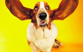 good communicating involves really listening
