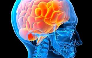 NLP Power of the Brain