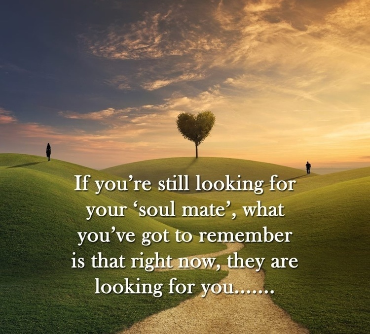 your true soulmate is out there looking for you