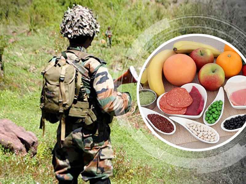 Will You Be Able To Follow The Military Diet Plan With The Discipline Of A Soldier?