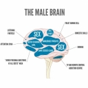 Group logo of Ask a Male Brain